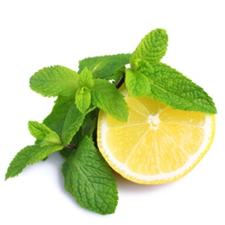lemon-and-mint