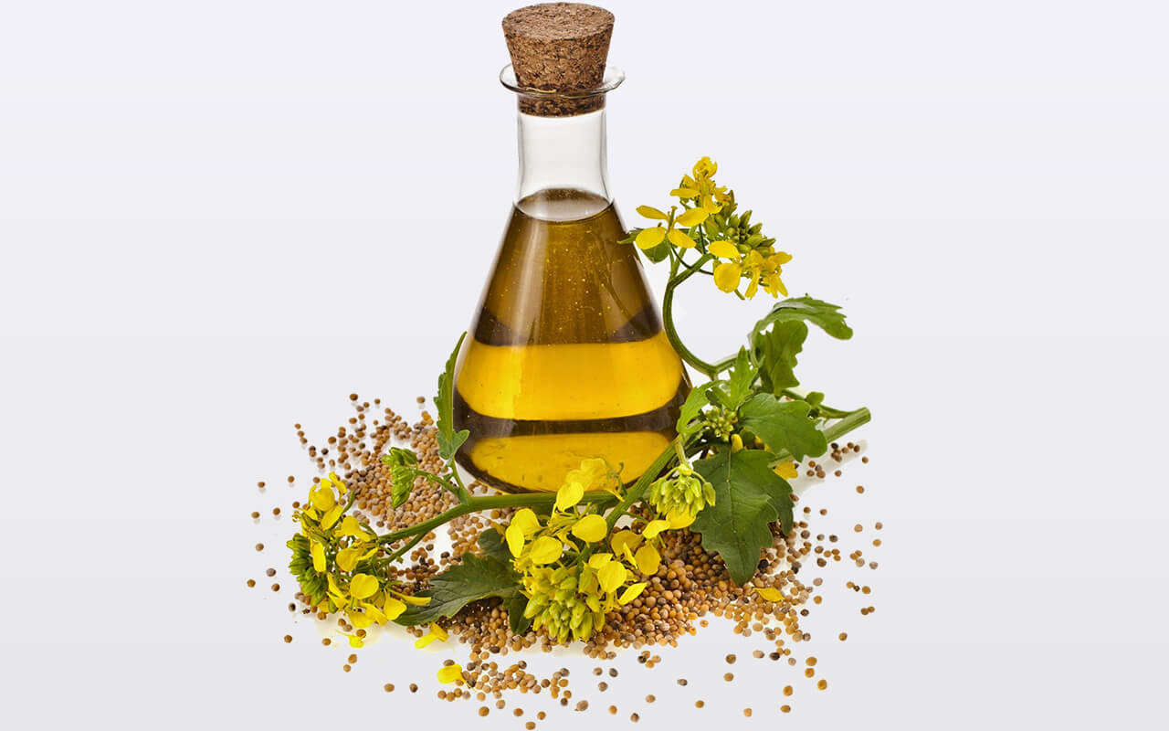 how to use mustard oil for cooking
