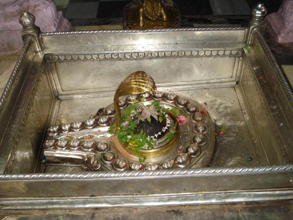 Baba Vishwanath Mahadev Varanasi